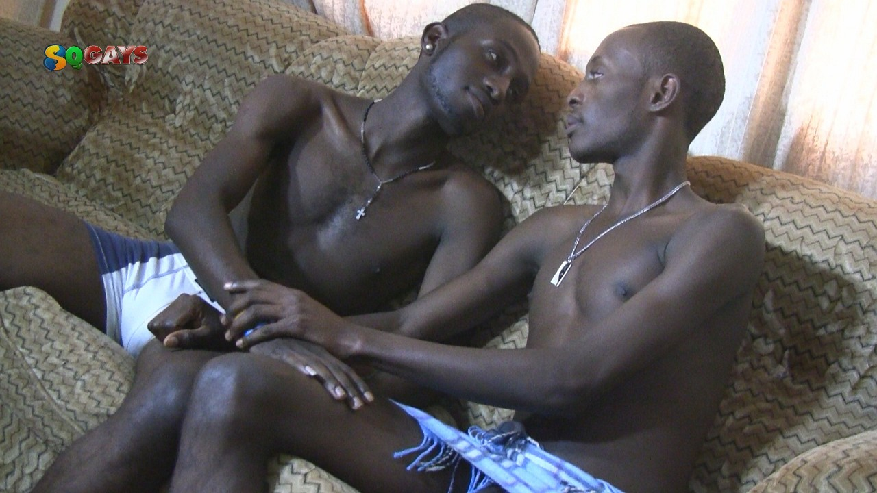 free hamster gay porn google